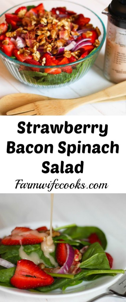 Are you looking for a quick and easy salad recipe? This Strawberry Bacon Spinach Salad won't disappoint!