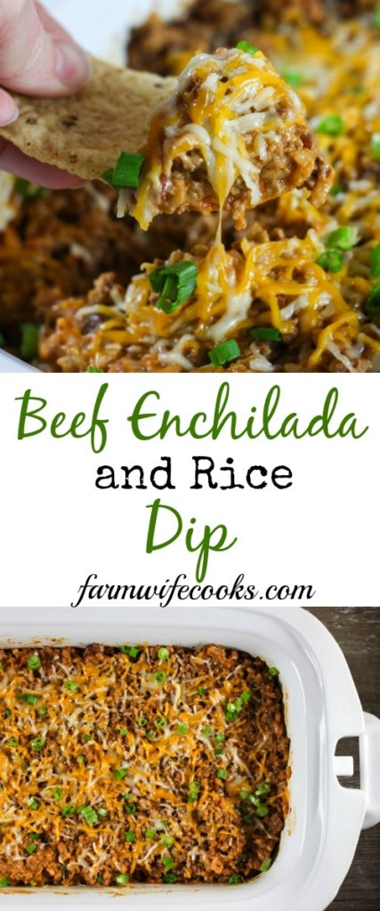 Are you looking for a great dip recipe? This Crock Pot Beef Enchilada and Rice Dip has all the taste of your favorite Mexican meal but in dip form!