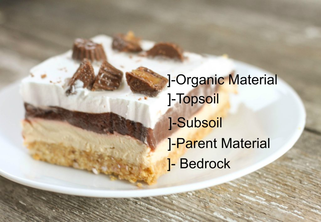 This No Bake Chocolate Peanut Butter Delight is the perfect layered dessert recipe for the chocolate peanut butter lovers in your life! This recipe can be used as a great science lesson