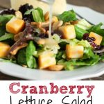 This Cranberry Lettuce Salad is the perfect salad for your family Thanksgiving or Christmas but easy enough for a weeknight meal. This recipe is the perfect healthy side recipes for a holiday pitch-in.