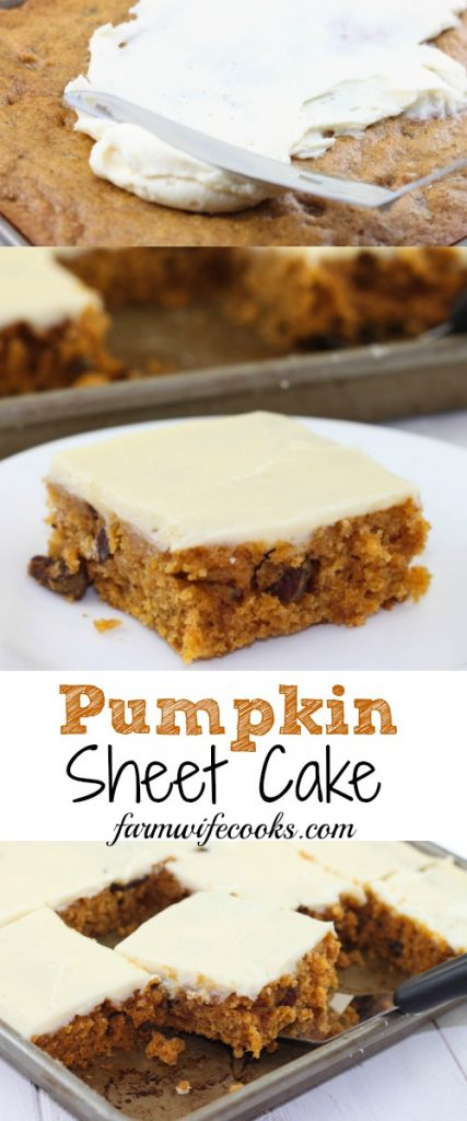 Pumpkin Sheet Cake With Cream Cheese Icing The Farmwife