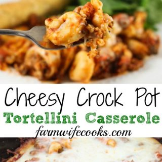 This Cheesy Crock Pot Tortellini Casserole recipe is quick and easy to make and kid approved!