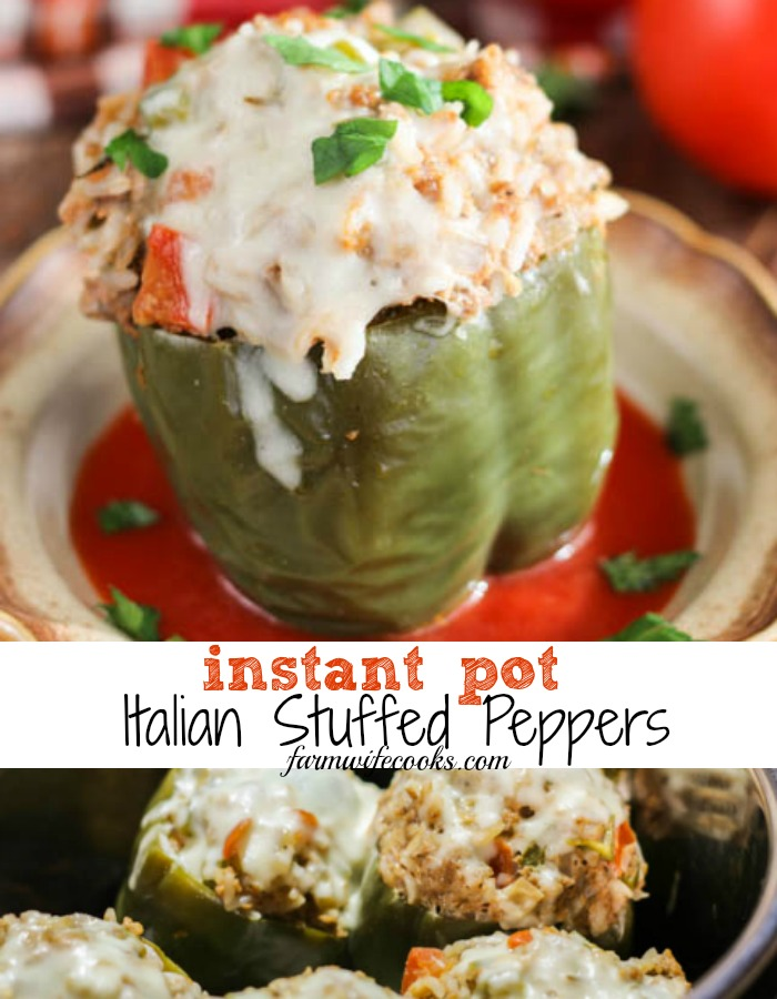 Are you looking for a great ground beef pressure cooker recipe? These Instant Pot Italian Stuffed Peppers are easy to make and oh so yummy!