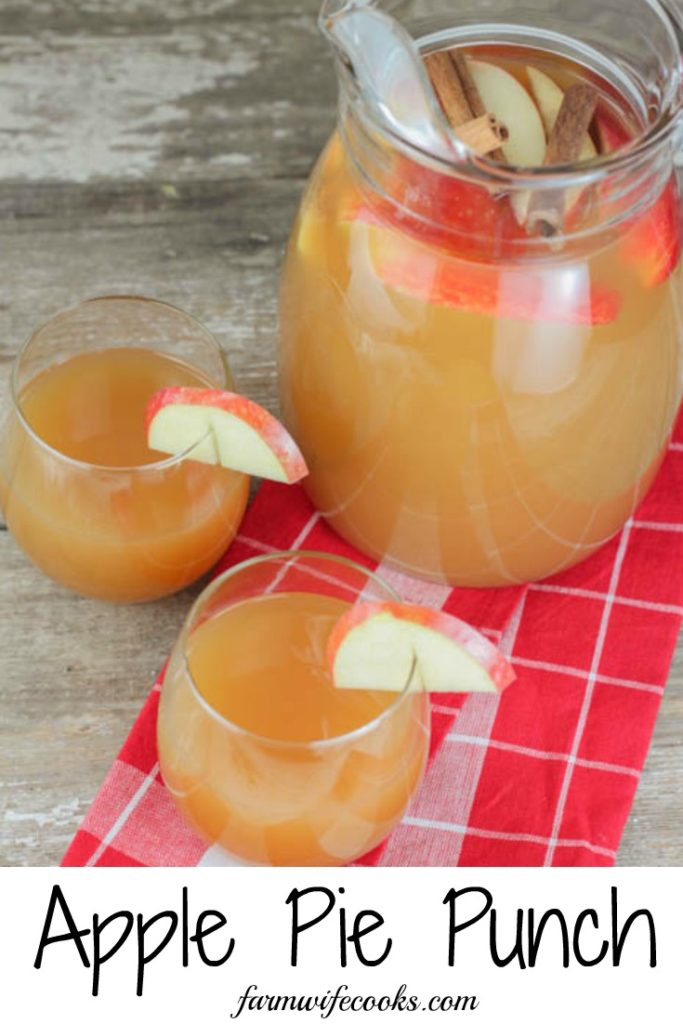 Spiked Apple Pie Punch is a fun fall drink recipe that includes alcohol and tastes great served cold or warm.